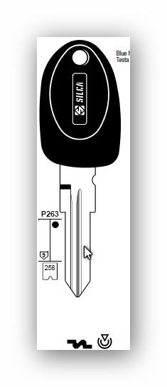 Schlüsselkopie für Fiat Code2 Ducato, Punto, u.A.